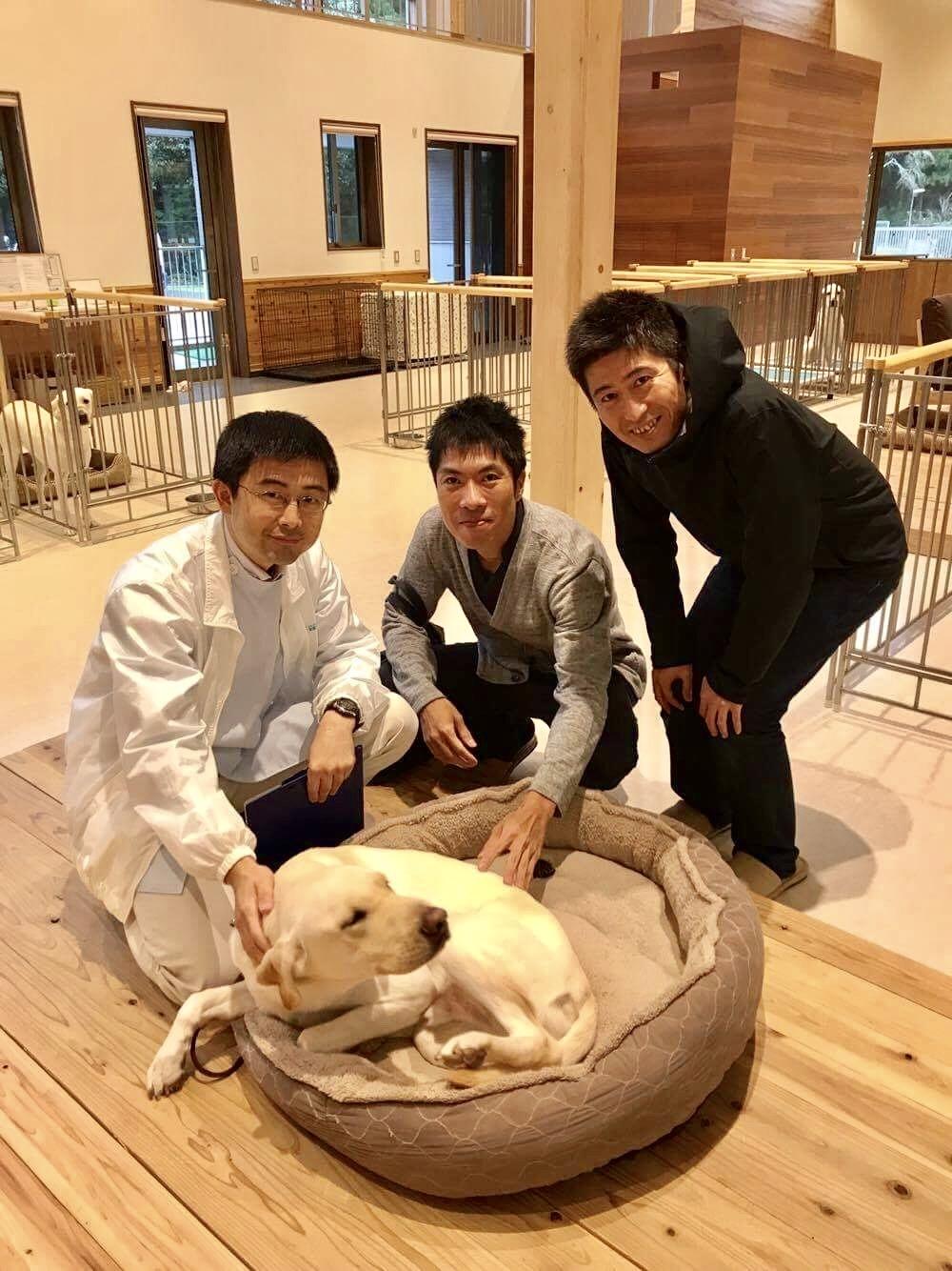 盲導犬協会3
