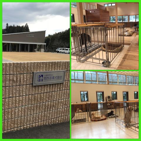 関西盲導犬協会2018