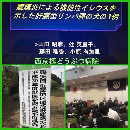 近畿地区学会2018